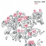 newtone2060