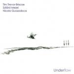 guazzaloca_driscoe_mezei_underflow