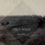 orla_wren_soil_steps