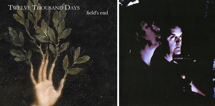 twelve thousand days - Field s end copy