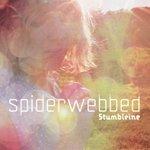 stumbleinespiderwebbed